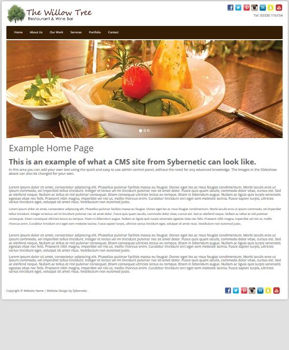 Informational Website Design  - Platinum Package